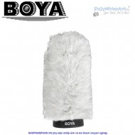 Boya BY-P180 windshield