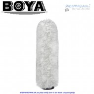 Boya BY-P290 windshield