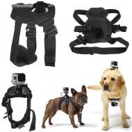 dây đeo action cam cho thú cưng